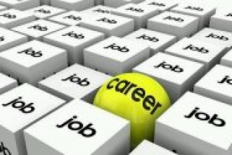 Công việc hay sự nghiệp sẽ phù hợp với bạn?